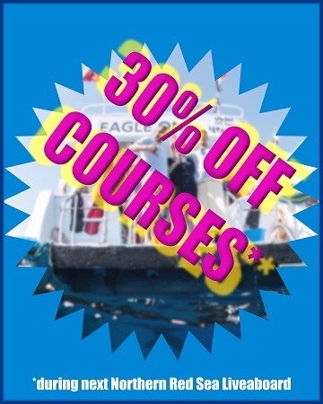 30 off courses