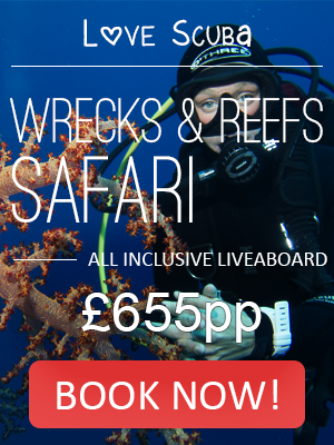 Wrecks and Reefs Liveaboard Safari scuba diving holidays in the Red Sea Sharm El Sheikh with Eagle Divers