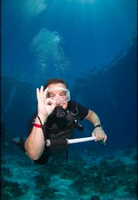 PADI & SSI Courses in the Red Sea